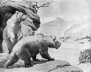 Cave bears high on a rocky cliff