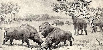 Hyaenodon and Moropus