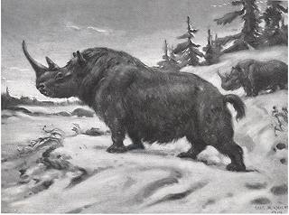 A woolly rhinoceros in the snowy Acrtic