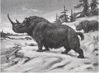 A woolly rhinoceros in the snowy Acrtic